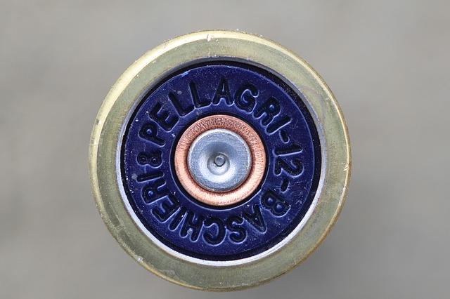 nábojnice do pušky.jpg